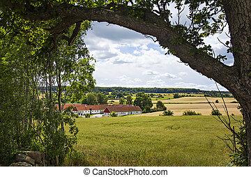 Swedish farmland