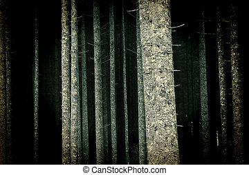Brightly lit trees in forest - Spooky, brightly lit trees in...