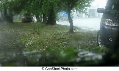 Cars Stopped Under a Tree Waiting When Stop Large Hail. -...