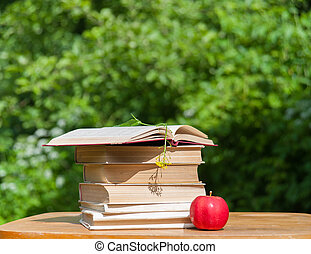 reading books - red apple and books on the table