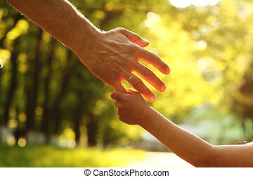 the parent holding the hand of a small child - a the parent...