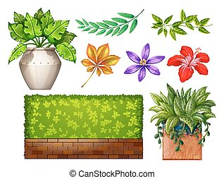 Gardening - Different kind of flowers and plant in the...