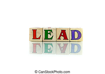 lead colorful wooden word block on the white background
