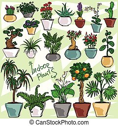 Indoor Plants, set
