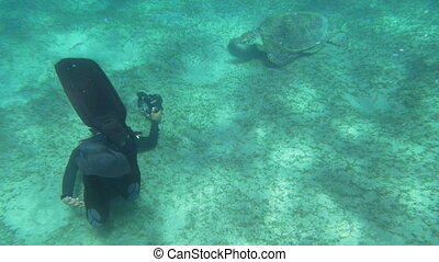 Diver and Big Sea Turtle - Slow motion shot of a man in...