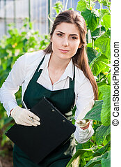Young woman at work in greenhouse - Portrait of a young...