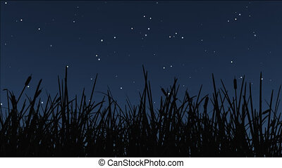 night stars 15 - stars twinkle, a shooting star cross over...