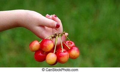 Cherries in hand girl on green background