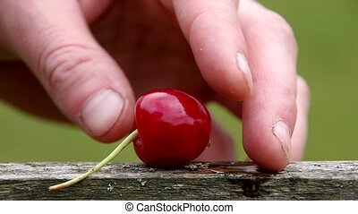 The core of cherries - Cherry and the core of cherries