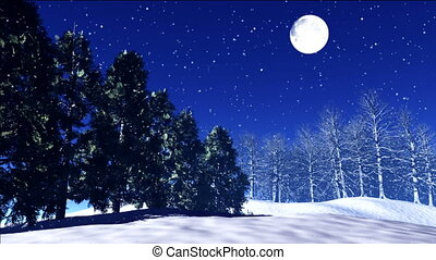 night stars 24 - stars twinkle in the night sky, snow fall...