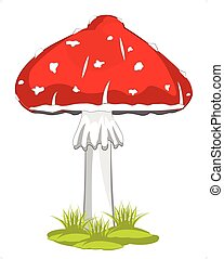 Mushroom fly agaric - Poisonous mushroom fly agaric on white...