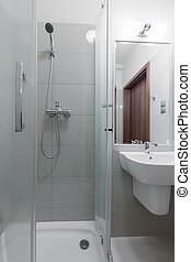 Toilet interior with shower cubicle