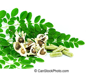 leaves of the Bitter cucumber-chinese (Moringa oleifera Lam.) Processed into Bitter cucumber-chinese. Powder packed in capsules.