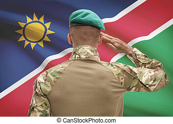 Dark-skinned soldier with flag on background - Namibia -...