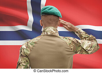 Dark-skinned soldier with flag on background - Norway -...