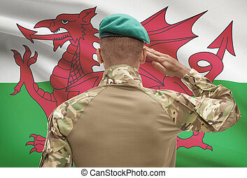 Dark-skinned soldier with flag on background - Wales -...
