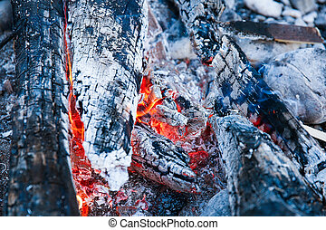 Embers of a self-made campfire, lit for cooking, roasting...