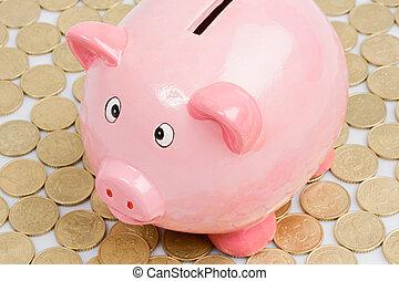Pink piggy-bank