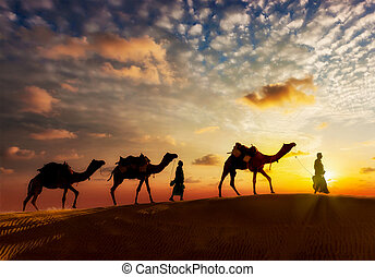 Two cameleers camel drivers with camels in dunes of Thar...