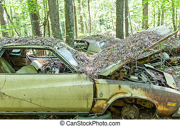 Old Grungy Buick with Hood Open