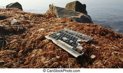 Broken computer keyboard with seaweed brought to shore by...