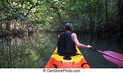 old man paddles on kayak among mangrove jungle at backlight