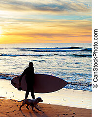 Surfer, dog, beach - Silhouette of a surfer with a dog at...