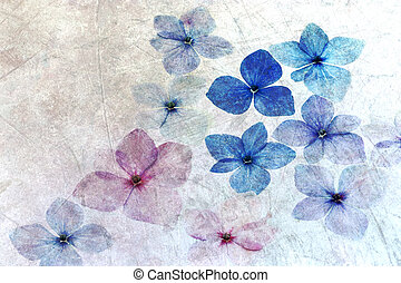 Hydrangea petals with texture overlay