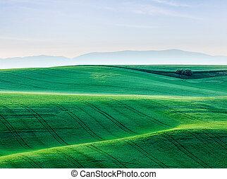 Moravia rolling landscape - Moravian rolling landscape....