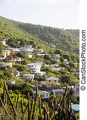 residential neighborhood on mountain bequia st. vincent -...