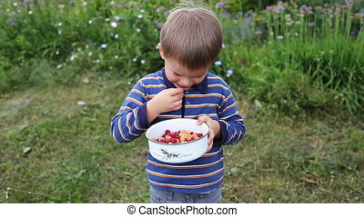 Boy eating fresh berries - Young Boy Eating fresh...