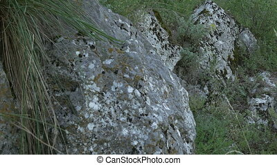 Limestone Composition Rocky Cliff - Tilt shot to a mountain...