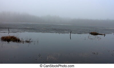 Foggy morning over spring lake 1 - view of lake with fog,...