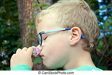 Child smelling flower - young boy smelling small flower