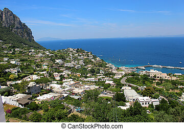 Capri - Beautiful vegetation on the cliff overlooking the...