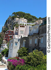 Capri - Beautiful vegetation and houses on the cliff in the...