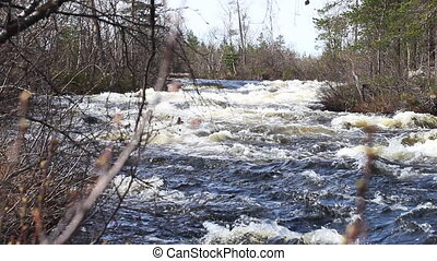 Rapid river in the taiga forest - View of a mountain river....