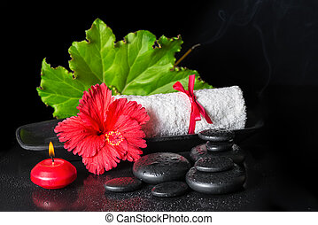 photos de beau, hibiscus, concept, feuille, roulé, zen, spa, rosée
