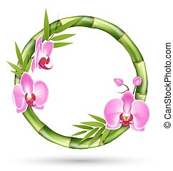 Green Bamboo Circle Frame with Pink Orchid Flowers Isolated...