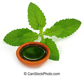 Medicinal holy basil or tulsi leaves with extract over white...