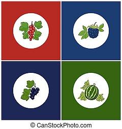 Round White Fruit Icons on Colorful Background - Fruit...