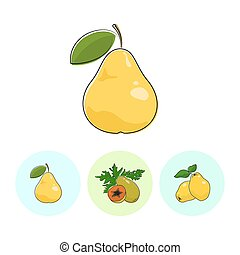 Fruit Icons, Pear , Papaya, Quince - Fruit Pear on White...