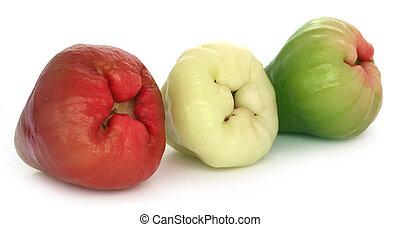 fresco, água, maçã, ou, rosÈ,...