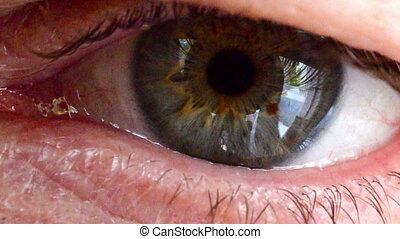 human eye blinking - close-up of a human eye blinking and...