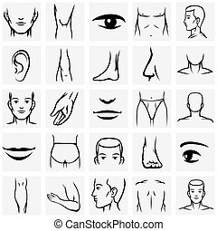 Male body parts icons set Arm and foot, leg and torso, elbow...