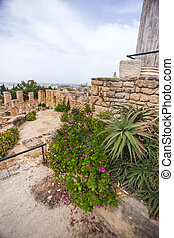 Tunisia Ancient Carthage Byrsa hill - The Punic quarter and...