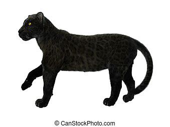 Black Panther - 3D digital render of a big cat black panther...