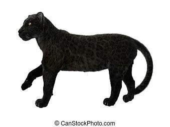 Black Panther - 3D digital render of a big cat black panther...