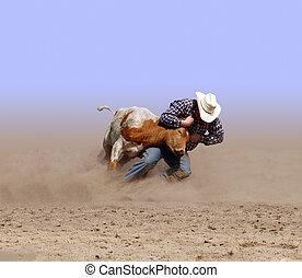 Man Against Beast - Cowboy Wrestling a Texas Longhorn Steer...
