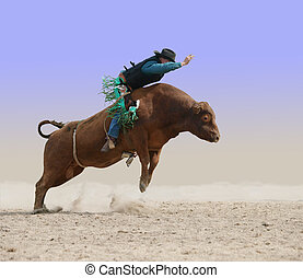 Cowboy on a Red Bull isolated with clipping path